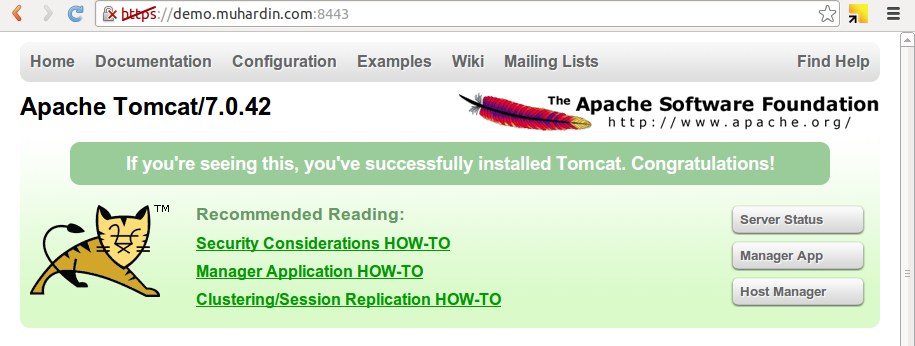 Tomcat HTTPS Red