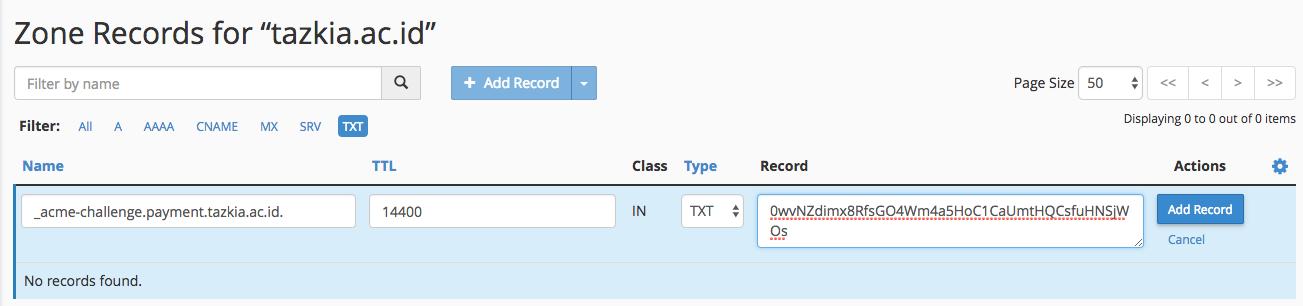 Konfigurasi DNS Record