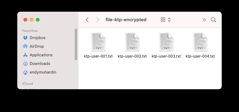Folder setelah pakai vault