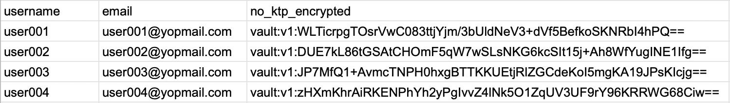 Database setelah pakai vault