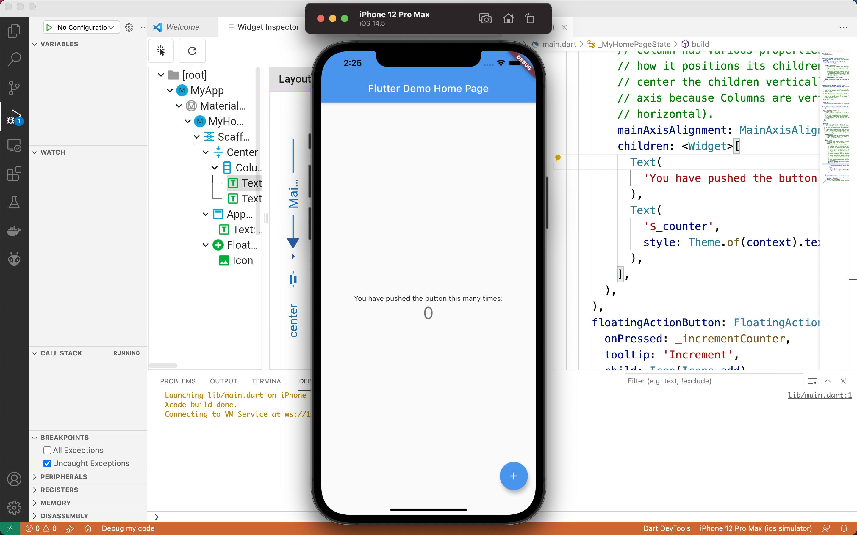 App Display iPhone